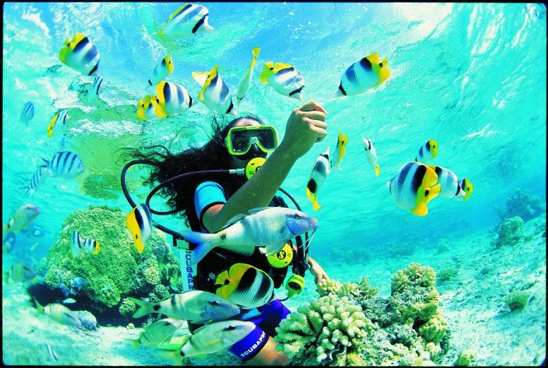 21 Most Beautiful Amazing Snorkeling Adventure Best